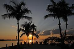 Abendstimmung / Florida Keys (Mampfred) Tags: usa rot strand america golf keys licht meer warm sonnenuntergang florida sommer wolken amerika sonne schatten chillen mexiko atlantik sehnsucht abendrot palmen sd entspannen entspannung relaxen sden sdlich ozean wrme trumen