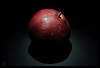 هر گردی گردو نیست... اثبات از طریق مثال نقض (lostpolarbear) Tags: pomegranate گردو انار گرد گردی