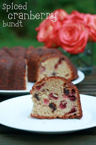Spice Cranberry Bundt - I Like Big Bundts 2011