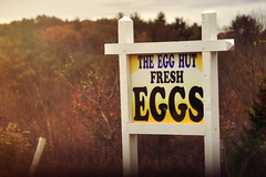 Egg Hut (Mary Vican) Tags: autumn fall sign yellow rural forsale farm connecticut country newengland signage eggs agriculture killingly fresheggs plainfield wauregan egghut