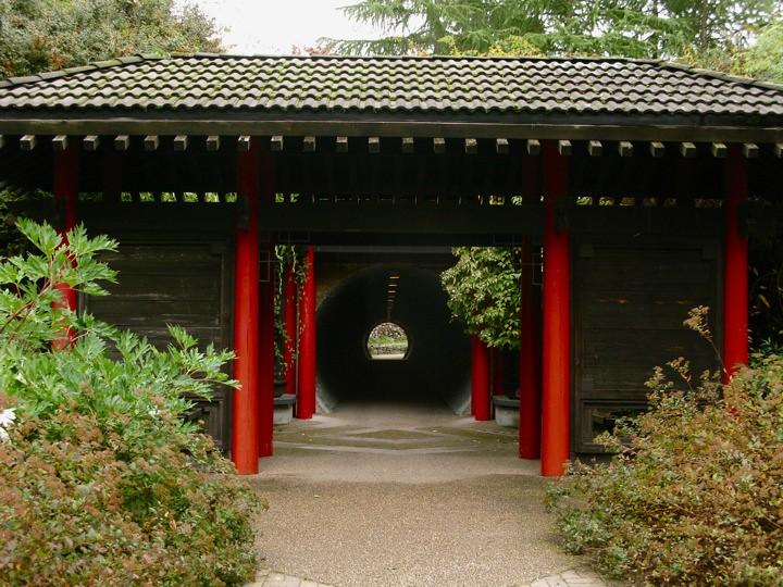 ubc botanical garden 003