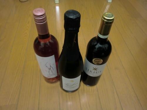 ボルドーワイン20111103-002