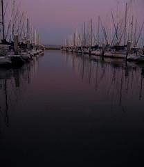 Sometimes it just works .. (Victoria Carpenter) Tags: sailboat marina sailing baybridge sanfranciscobay