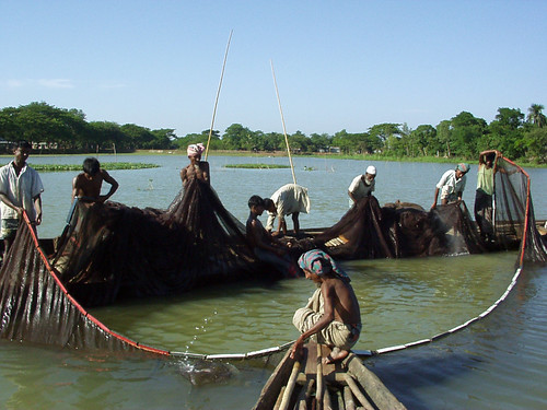 Small-scale fisheries, Bangladesh. Photo by WorldFish, 2001
