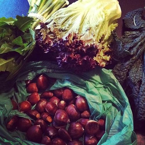 Farmer's market 11/2/11 pt 2