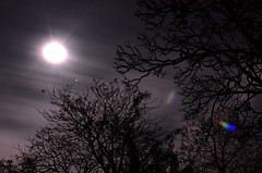 Full Moon Long Exposure 01 (theflatboy) Tags: city longexposure trees shadow england sky urban cloud moon black tree london silhouette night clouds garden dark outside exposure glare darkness bright outdoor capital silhouettes fullmoon nighttime lensflare midnight flare moonlight remote
