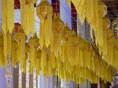 Yellow lanterns (WTPille) Tags: yellow thailand temple chiangmai lantern watphrasingh buddhistic วัดพระสิงห์วรมหาวิหาร