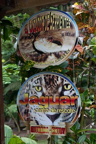 JaguarRescueCenter-1