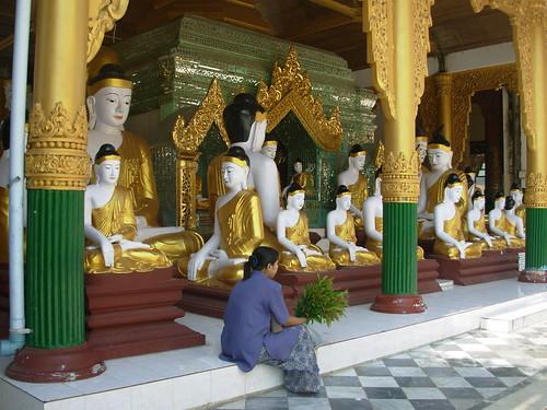 Shwedagon 07 (11)