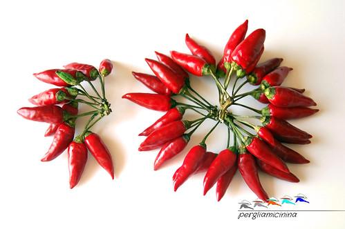 peperoncini freschi_1