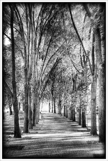 Arch Park 2011-10-15 1