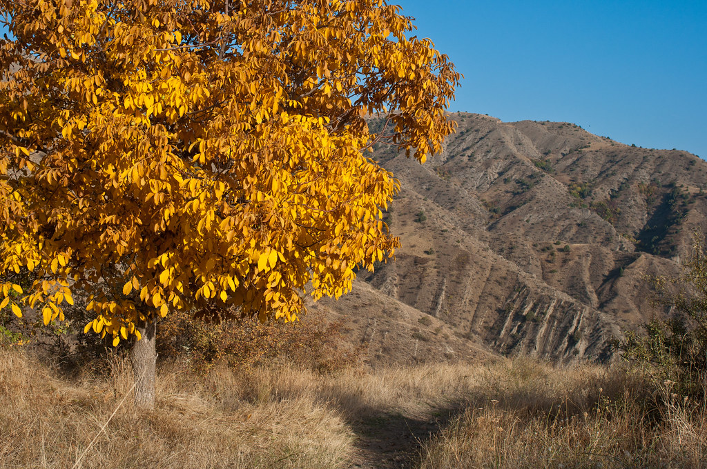A path in Khosrov national park, Armenia