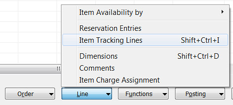 Line - Item Tracking Lines