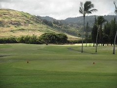 Turtle Bay Colf Course 112