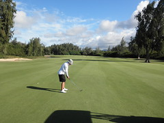 Turtle Bay Colf Course 336