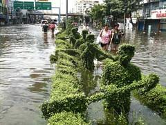 thaiflood_291020116