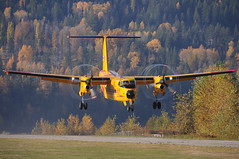 De Havilland CC-115 Buffalo 115451 (+Jethro+) Tags: bc britishcolumbia military nelson turboprop stol canadianarmedforces searchandrescue dhc5 19thwing cznl