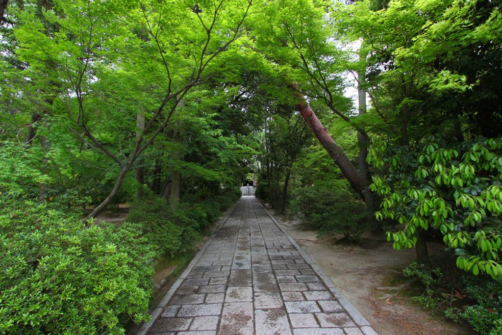 Nara Nishonokyo Walking guide (18)