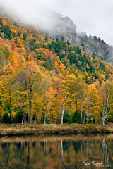 Ausable Color ([Chris Tennant]) Tags: autumn orange cliff mist ny newyork color reflection fall nature yellow fog canon river seasons upstate foliage adk ausable adirondackpark 24105mm 5dmkii christennantphotography