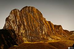Jurassic Park II (Daniel Wildi Photography) Tags: autumn light mountain rock switzerland moss ngc pass lichen withered gantrisch gurnigel 2011 cantonbern nünenenflue danielwildiphotography nünenefluh