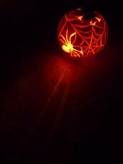happy halloween (JodyDigger) Tags: orange halloween pumpkin spider carved glow web spiderweb candlelit carvedpumpkin halloween2011