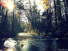 Wash Me Away. (FadedKate) Tags: trees sun fall river bright foliage washmeaway fadedkate