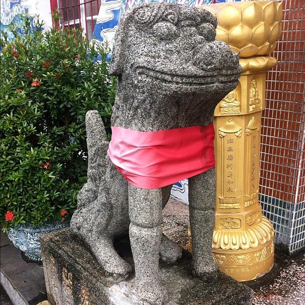 碧蓮寺,石狛(閉口的是母的)