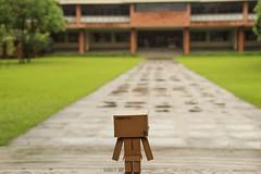 Danboard (robbie_garcia) Tags: toy photography yotsuba danbo danboard