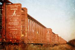 Lumber Cars (Grapefruit Moon (Barb)) Tags: rural train thankyou alberta boxcars freetexture annagay