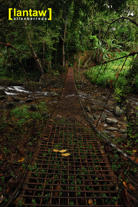 Imugan Hanging Bridge 2