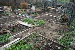 my plot 091