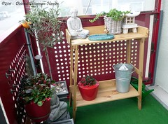 mijn oppottafel staat / my potting table is ready (dietmut) Tags: november rotterdam balcony balkon nederland thenetherlands zuidholland hoogvliet 2011 pottingtable panasoniclumix zalmplaat dmcfx500 dietmut oppottafel