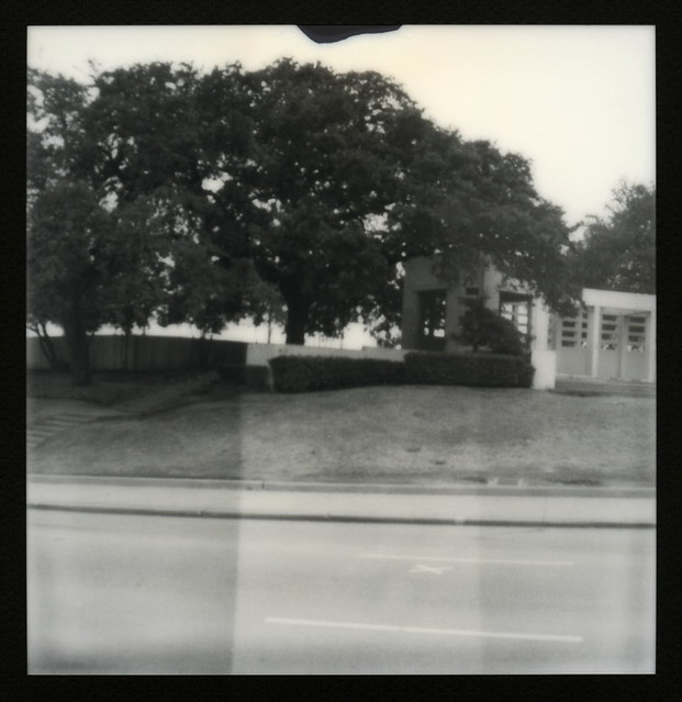The Grassy Knoll (Back And To The Left)
