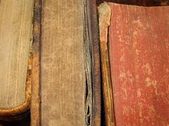 Des pages et des pages et des pages... (Suzel...) Tags: old red art canon paper rouge pages books read papier livres feuilles lire antiquits anciens poussire