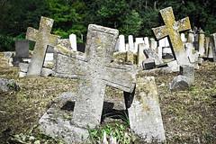 Troje (ModestyBlaiseBG) Tags: cemetery cross serbia crosses christian christianity tradition orthodox orthodoxy srbija troje serbian ljig serbianheritage crosstreeoflife grobljeselodii