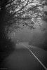 Pause (stalin.sm) Tags: mist kerala wayanad mistymorning vythri padinjarathara