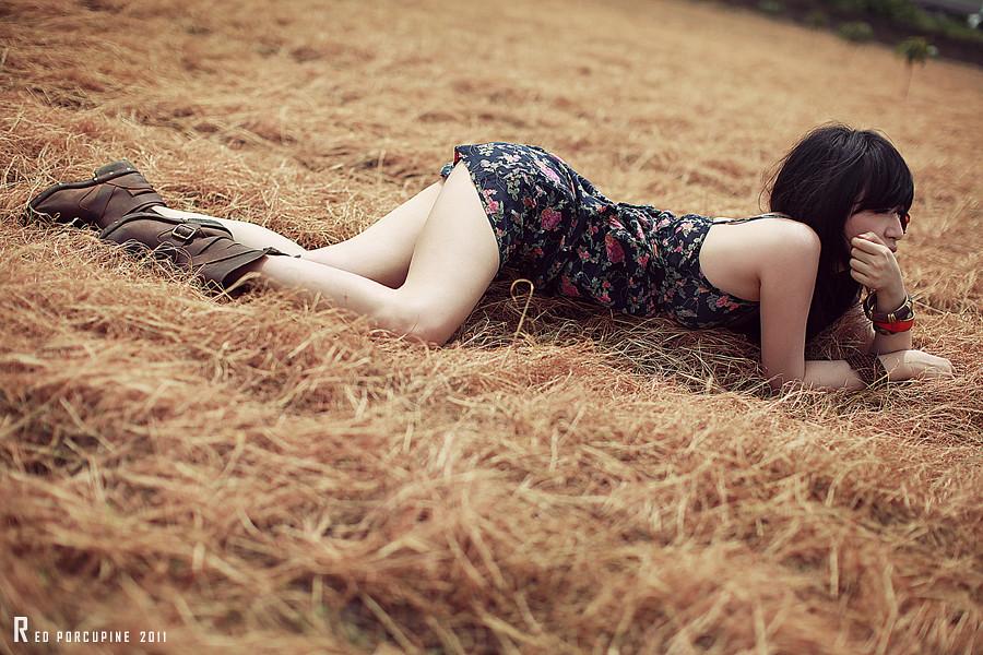 http://farm7.static.flickr.com/6117/6242795516_c929010473_b.jpg