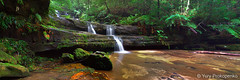 Terrace Falls Panorama (-yury-) Tags: nature water landscape waterfall australia bluemountains falls nsw hazelbrook terracefalls