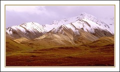 Denali (laguenther) Tags: mountains alaska landscape fresh denali snowfall mooswa westcoastwilderness mountainfreak laguenther laguenther