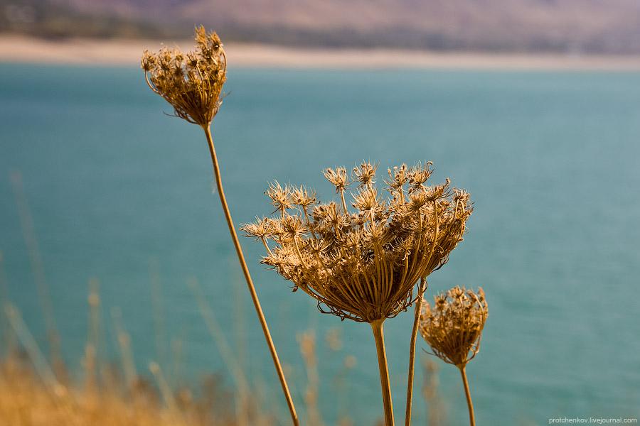 Charvak lake shores