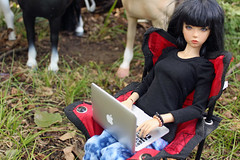Dear Laila, (Sylvin13) Tags: autumn horses apple october afternoon ih soa jid macbook iplehouse battat ourgeneration iple