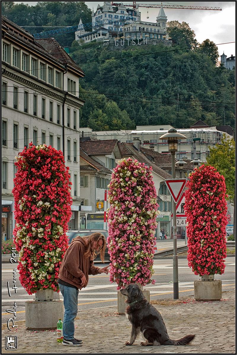 Suiza - Pueblos con encanto Lucerna - Hotel Chateau Gütsch