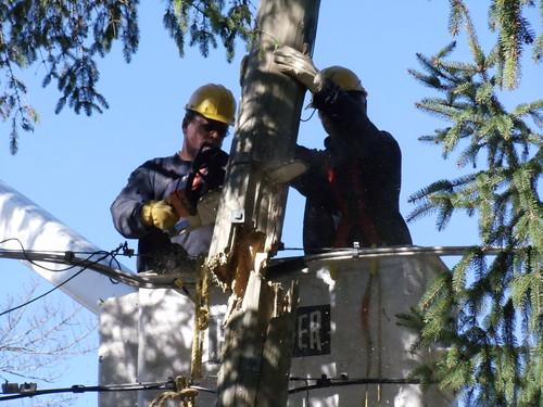 Broken Utility Pole