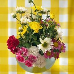 A little bouquet (Micheo) Tags: flowers stilllife flores home casa bunch vase bouquet tablecloth ramo bodegon mantel jarron clavelinas crisantemos