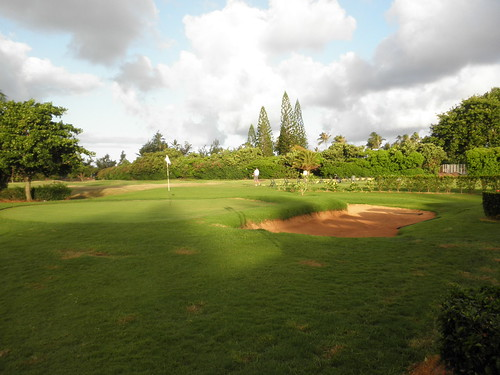 Turtle Bay Colf Course 010