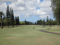 Turtle Bay Colf Course 158