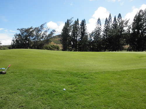 Turtle Bay Colf Course 248