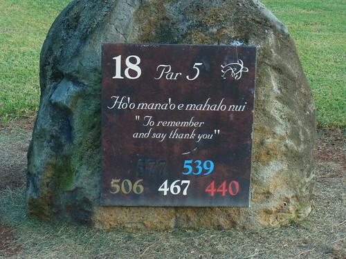 Turtle Bay Colf Course 394