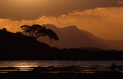 Sunset At The Swamps (AnyMotion) Tags: africa travel sunset nature landscape reisen colours sonnenuntergang kenya ngc natur npc afrika landschaft kenia farben 2011 africansky anymotion bej landschaftsaufnahmen canoneos5dmarkii 5d2 amboseligamereserve