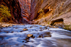 """Zion Narrows"" - Horizontal"